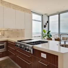 Appliances Set in Cabinets for Ultra Modern Look