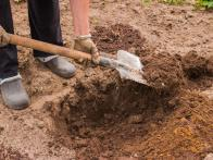 How to Improve Clay Soil