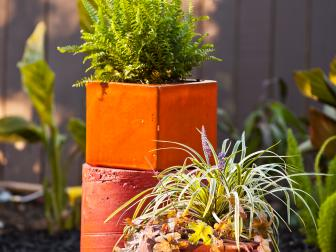 Plants in Red-Orange Containers in a Sunny Outdoor Space