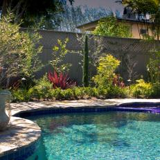 Serene Swimming Pool With Lush Landscaping