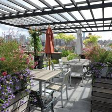 Large Roof Deck With Planters