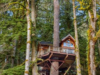 Elaborate Treehouse in Washington State