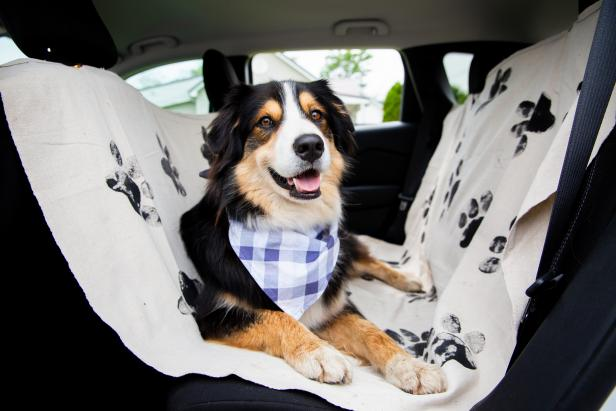 Dog Car Seat Cover - Best Sewing Projects for Pets