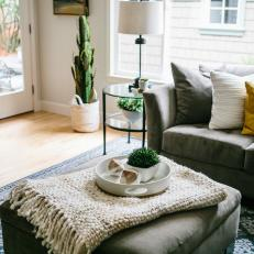 Transitional Living Room With Cactus