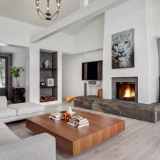 White Contemporary Living Room With Leopard Photo