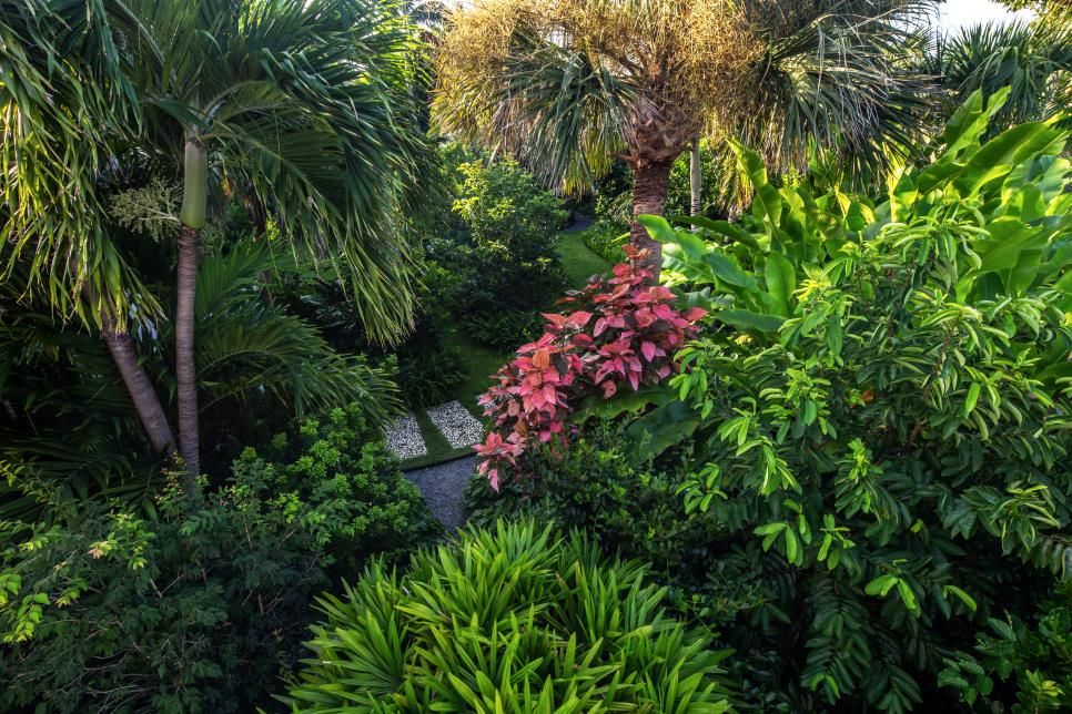 Tropical Garden With Pavers