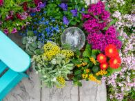 50 Container Gardening Ideas