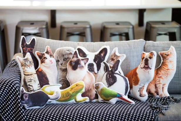 Custom Pet Gifts | HGTV