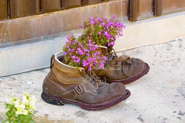 Purple Flowers Planted in Boots