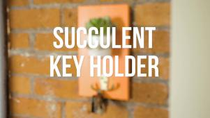 Succulent Key Holder